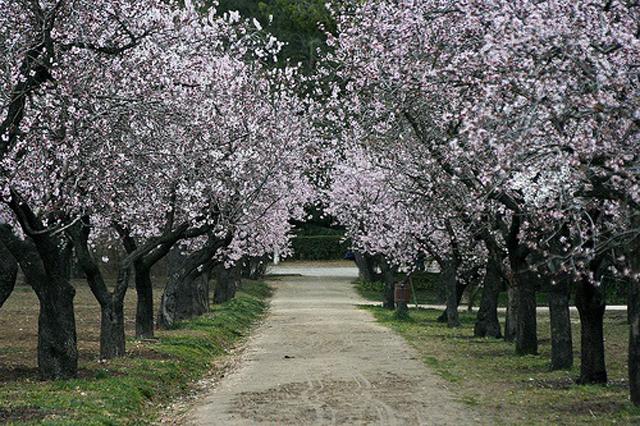 La Quinta de los Molinos - Destino y Sabor