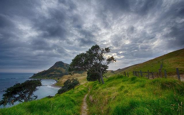 la naturaleza desbordante en Nueva Zelanda - Destino y Sabor