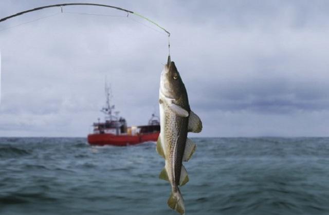 Pesca del bacalao en aguas de Alaska - Destino y Sabor