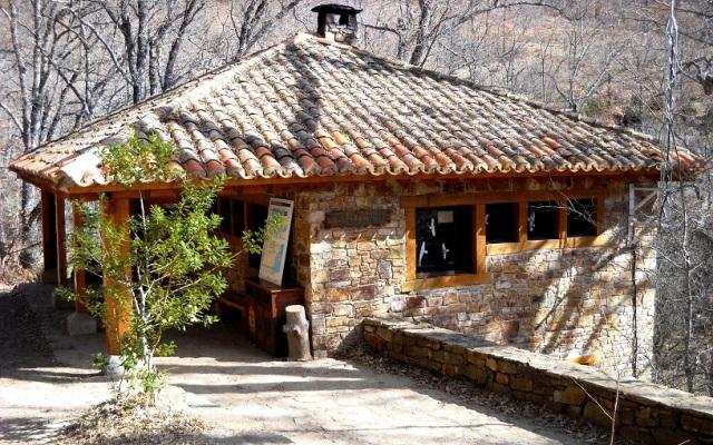 Entrada al Hayedo - Imagen de senderismonline.blogspot.com