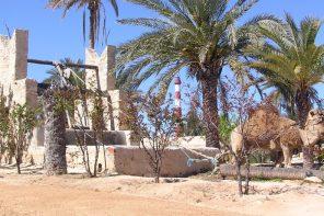 Parc Djerba Explore - Destino y Sabor