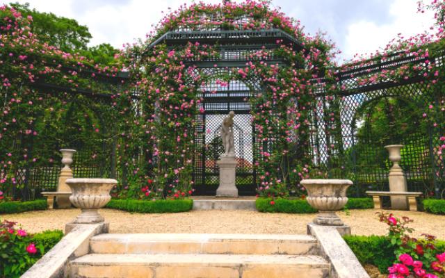 Rosaleda de Val-de-Marne