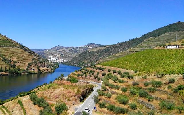 Bodegas, viñedos y quintas junto al Duero - Destino y Sabor