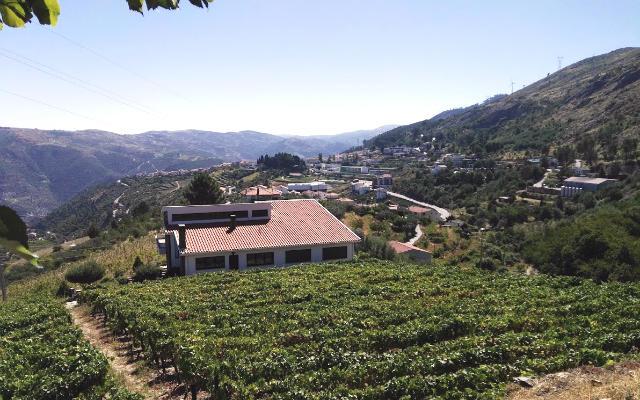 Vistas del valle del río Tabora desde Tabuaço - Destino y Sabor