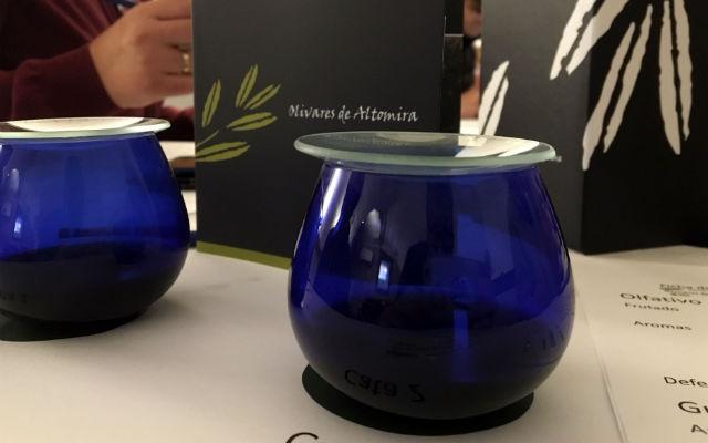 Cata de aceites de Olivares de Altomira - Destino y Sabor