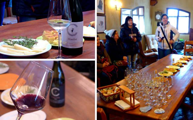 Catando los vinos de Pago Calzadilla - Destino y Sabor