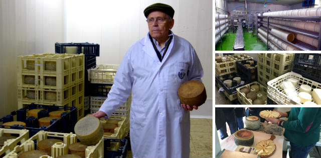 Visita a la fábrica de quesos La Ermita - Destino y Sabor