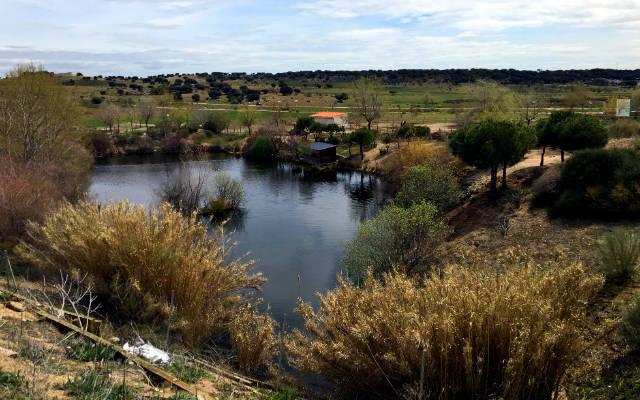 Humedal recuperado en la reserva de la Fauna José Peñas - Destino y Sabor