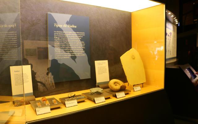 Paneles explicativos en el museo - Destino y Sabor