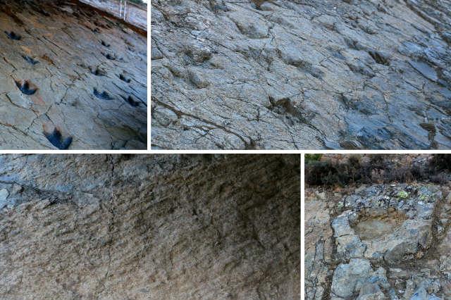 Yacimientos de ignitas, huellas de dinosaurios y de la arena del mar - Destino y Sabor