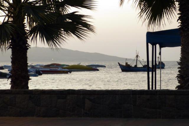 Paseo junto al mar en Paracas - Destino y Sabor