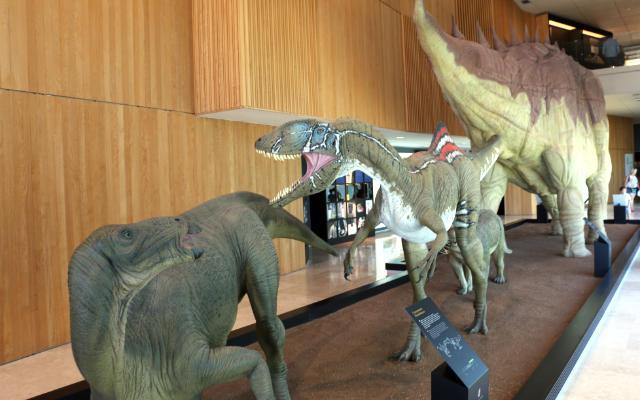 Maquetas de dinosaurios en el interior del museo - Destino y Sabor