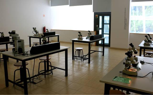 Sala de microscopios del museo - Destino y Sabor
