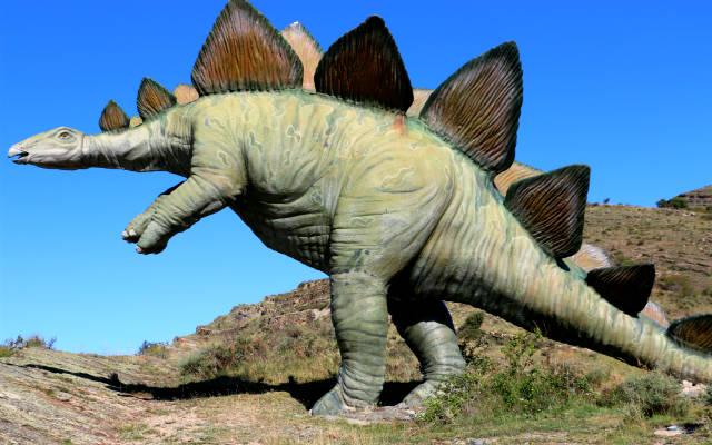Estegosaurio en el Yacimiento de Peña Portillo - Destino y Sabor