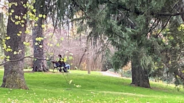 Un parque muy romántico - Destino y Sabor