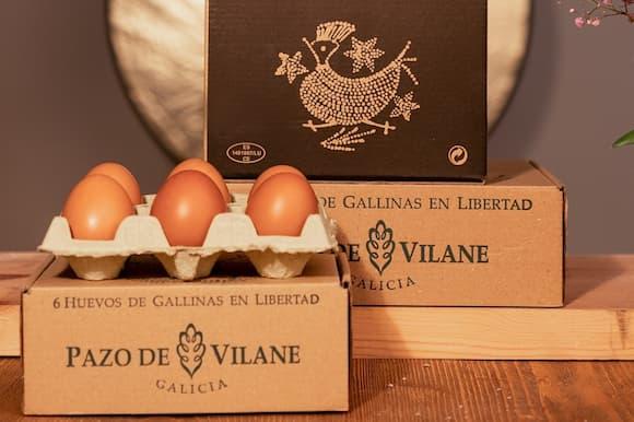 Huevos camperos de Pazo de Vilane - Imagen del Pazo