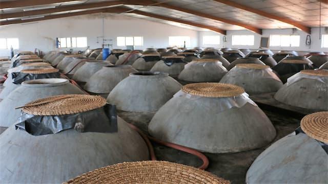 Depósitos de hormigón para la elaboración de vinos en Covival - Destino y Sabor