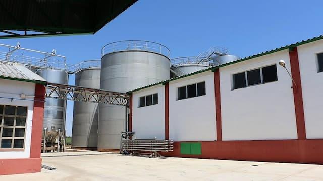 Instalaciones de la Bodega Cooperativa de Valdepeñas - Destino y Sabor