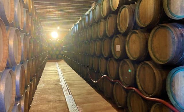 Sala de barricas de la Bodega Covival - Destino y Sabor