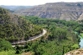 Ruta del Vino de la Manchuela - Destino y Sabor